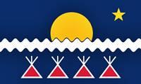 Bandera de los indígenas de América