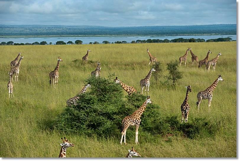 Parque Nacional de Gambella