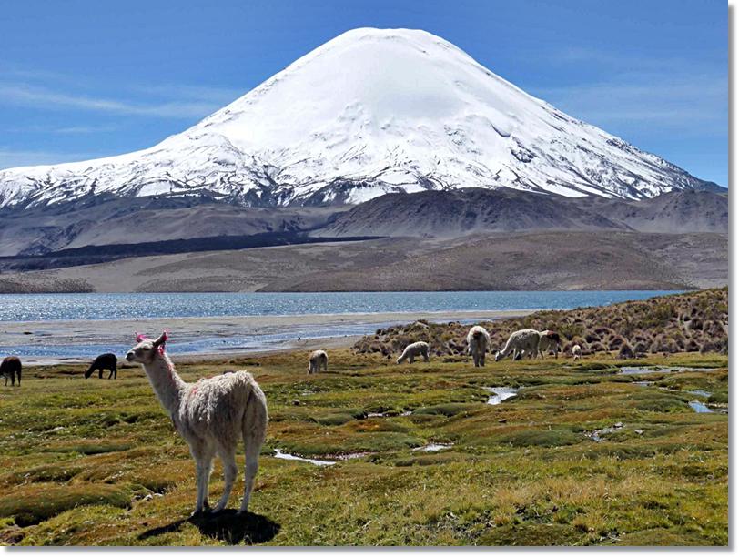 Altiplano junto al lago titicaca donde viven los aimaras - etnias.net
