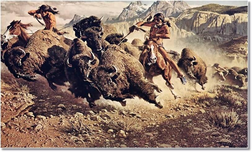 La caza del bisonte americano constituía la base d ela alimentación de numerosas tribus indias - etnias.net