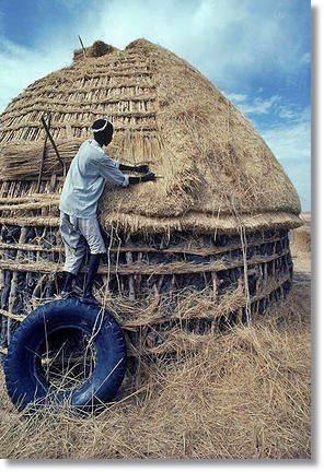 Los baggaras levantan sus tiendas de estructura semiesférica, con una armazón de estacas cortadas - etnias.net