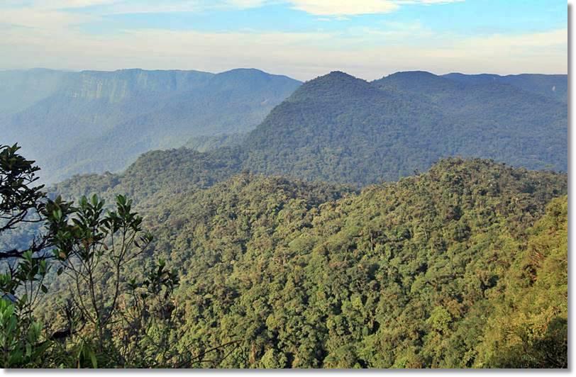 La extensa altiplanicie del Gran Pajonal es el hábitat de la etnia ashaninka - etnias.net