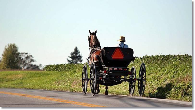 El caballo y la calesa, objetos de curiosidad para los forasteros, forman un esencial medio de transporte entre los amish - etnias.net