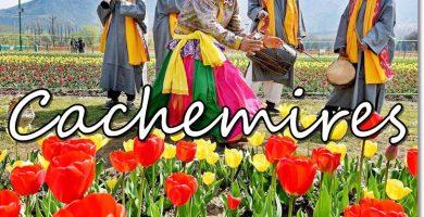 Cachemires - etnias.net