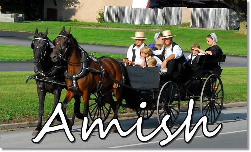 Los Amish - etnias.net