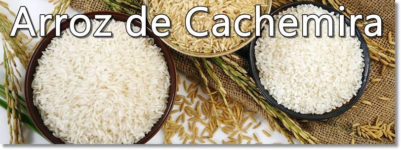 Los arrozales de Cachemira se labran en invierno - etnias.net