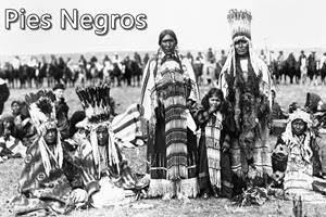 Pies Negros o Tribu Blackfoot - etnias.net