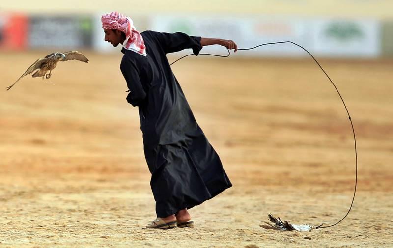 Desaparecidas las incursiones bélicas, pasatiempo beduino por antonomasia, algunos ricos de la Arabia oriental entretienen su ocio con la halconería